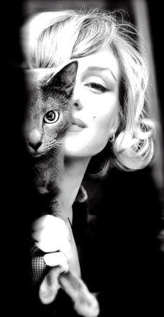 Marilyn Monroe & russian blue kitty