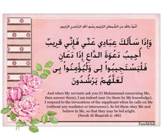 One of my favorite ones! Dear Sister, Nice Comments, Page 3, Quran, Life Quotes, Knowledge, Inspirational Quotes, My Favorite Things