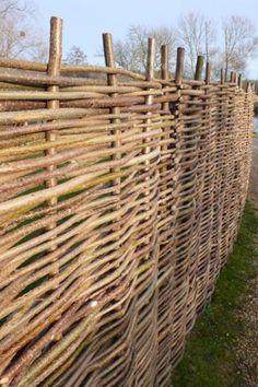 Sichtschutzelement aus Haselnuss, x Papillon& Natural Privacy Fences, Bamboo Privacy Fence, Wattle Fence, Garden Privacy Screen, Diy Garden Fence, Balcony Garden, Lawn And Garden, Coastal Gardens, Rustic Gardens