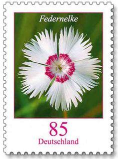 Deutschland Briefmarke Blumen 85 Cent