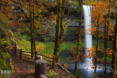 12 Hiking Spots In Oregon That Are Completely Out Of This World Oregon Travel, Oregon Hiking, Portland Oregon, Silver Creek Falls, Oregon Falls, Visit Oregon, Hiking Spots, Hiking Trails, Kayak