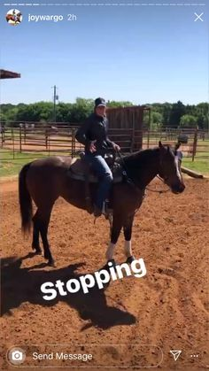 Joy Wargo talks about how to stop your horse Western Horse Riding, Horse Riding Tips, My Horse, How To Ride A Horse, Trail Riding Horses, Horse Camp, Barrel Racing Exercises, Horse Exercises, Horseback Riding Tips