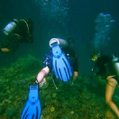 Scuba diving on the great barrier reef!