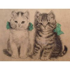 German artist Meta Plückebaum was a still life painter whose work, in large part, focused on kittens. She lived from 1876 to 1954 and was therefore decades before her time, since the internet — wit… Little Kittens, Vintage Cat, Cat Tattoo, Pretty Art, Cat Art, Pets, German, Cat Paintings, Cat Illustrations