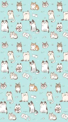 Wallpaper for iphone kawaii wallpaper, iphone wallpaper cat, kitten wallpaper, wallpaper gatos, Kawaii Wallpaper, Cat Wallpaper, Wallpaper Backgrounds, Cat Pattern Wallpaper, Mobile Wallpaper, Iphone Wallpapers, Seagrass Wallpaper, Paintable Wallpaper, Unique Wallpaper