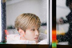 Seventeen Album, Seventeen Wonwoo, Hoshi, Photo Sketch, Pledis 17, Picture Credit, Pop Bands, Pledis Entertainment, Tvxq