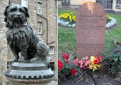 Bobby became famous as a symbol of loyalty in Britain. He was a Skye terrier devoted to his owner, John Gray. When Gray died in 1858, he was buried without a gravestone. Still, Bobby found the spot and stayed there, guarding the grave and leaving only for food, for 14 years. Greyfriars Bobby himself died in 1872. A granite fountain was erected in 1873 to honor his loyalty, commissioned by a countess and paid for by the RSPCA. John Gray eventually got a headstone, paid for by Bobby's fans.