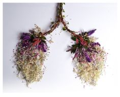 Pulmones de flores y hojas: Órganos de arte vegetal // Lung of flowers and leaves: Bodies as vegetable art