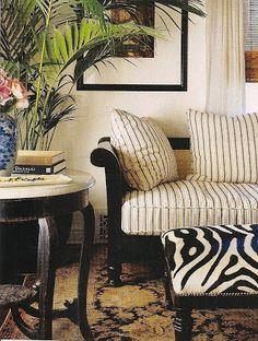 design dump: a touch of zebra