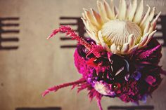 My second idea for the girls' bouquets is to use a King of Protea and skirt it with unusual orchids and other flowers in the deep fuchsia color palette.