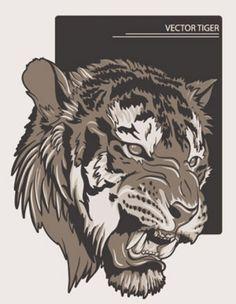 Stock Illustrations Tiger Vectors
