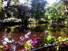 The Arboretum park in Nottingham.