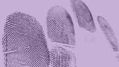 Walk this way: Come along and hear both our guests Peter James and Haydn Kelly talk about their work and how forensic gait analysis has become a useful tool, not only in the real world of law enforcement, but also as an expert in the Detective Roy Grace series. October 20. https://www.plymouth.ac.uk/whats-on/walk-this-way