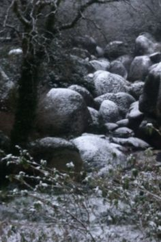 the boulders in the snow