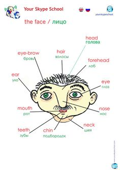 Parts of the face vocabulary. Visit www.russiancentre.co.uk for more information on group courses and individual tuition.
