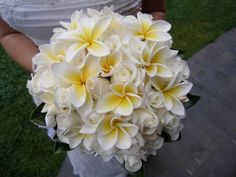 Stunning tropical style posy of white akito roses with white (yellow centre) frangipani.  Although real frangipani have been used in this posy, silk frangipani can be used a substitute if frangipani are not seasonally available.  http://www.floralevent.com.au