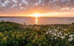 Download wallpapers Cape Breton Island, Sunset, ocean, North Atlantic Ocean, Nova Scotia, Canada