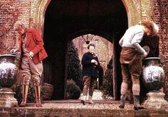 Snowdrop paradise: a collector's dream - Telegraph