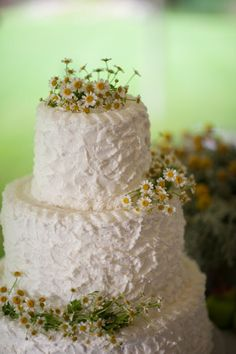 Rustic wedding cake with mini daisies ... Wedding ideas for brides, grooms, parents & planners ... https://itunes.apple.com/us/app/the-gold-wedding-planner/id498112599?ls=1=8  ... The Gold Wedding Planner iPhone App.