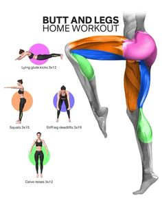 Womens fat tends to first accumulate on their butts and the backs of their thighs. Getting rid of cellulite in your lower body is hard but with the right workouts and commitment, it is possible Full Body Gym Workout, Summer Body Workouts, Leg Workout At Home, Gym Workout For Beginners, Gym Workout Videos, Fitness Workout For Women, Fun Workouts, At Home Workouts, Training Apps