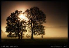 Magic Fog by Martin Krajczy on 500px