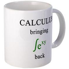 Calculus Mug. I'm such a math geek at heart.