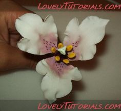 Nomocharis Flower making tutorial