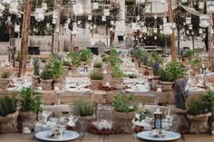 A Dazzling Destination Wedding: Isabel Roth's Celebration in Puglia, Italy Perfect Wedding, Dream Wedding, Wedding Stuff, Puglia Italy, Verona Italy, Venice Italy, Vogue Wedding, Chuppah, Wedding Table Settings