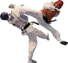 Tae Kwon Do~2011 World Championship