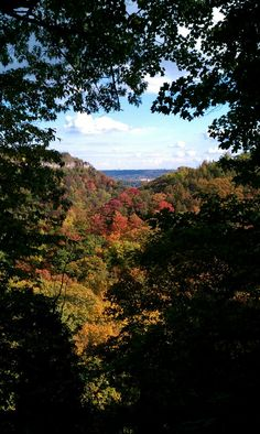 View from trail between Websters fall and tews fall