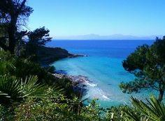 Fotos Palma de Mallorca - Imágenes destacadas y fotos de Palma de Mallorca