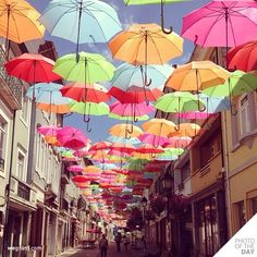 Dozens of beautiful, brightly colored umbrellas line a shopping promenade in Águeda—a small town located just south of Porto in Portugal. To see more. Portugal Vacation, Colorful Umbrellas, Umbrella Art, Instagram Blog, Viewer Instagram, Spain And Portugal, Installation Art, Art Installations, Small Towns