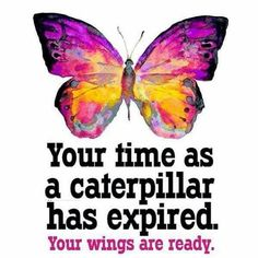 Your time as a caterpillar has expired. Your wings are ready. Words Quotes, Wise Words, Me Quotes, Sayings, Hospice Quotes, Hospice Nurse, Karen Salmansohn, Meditation, Butterfly Quotes