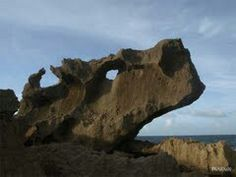 The bull's eye Dorado Puerto Rico