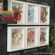 A small bite of mondocherry: vintage botanical collection...
