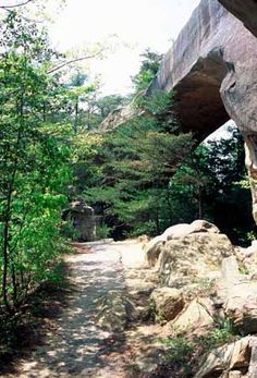 The Red River Gorge is one of the nation's special natural areas due to its stone arches, caves, cliffs, ravines, and waterfalls. This piece of Kentucky's landscape offers a spectacular scenic, natural and recreational experience. Take this route for a superior outdoor adventure.