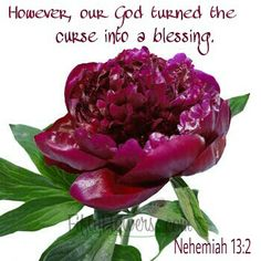 However' our God turned the curse into a blessing.  Nehemiah 13:2