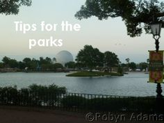 Disney Park Tips - Travel With The Magic - Amy@TravelWithTheMagic.com
