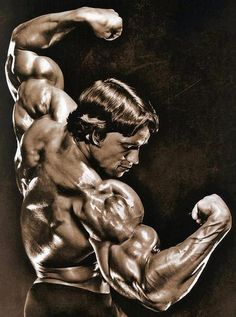 Arnold schwarzenegger - Mr olympia 5 times, crazily successful actor and the governor of california, among other accomplishments, he's another living legend. Fitness Motivation, Fitness Gym, Muscle Fitness, Daily Motivation, Fitness Weights, Muscle Diet, Lifting Motivation, Fitness Quotes, Motivation Quotes