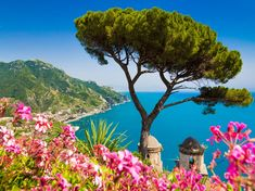 Picture of Scenic picture-postcard view of famous Amalfi Coast with Gulf of Salerno from Villa Rufolo gardens in Ravello, Campania, Italy stock photo, images and stock photography. Weekend France, Amalfi Coast Italy, Ravello Italy, Capri Italy, Places In Italy, Picture Postcards, Visit Italy, Italy Travel, Italy Vacation