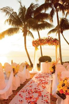 Sunset wedding ceremony with ocean views Wedding Ceremony Ideas, Wedding Events, Beach Ceremony, Wedding Ceremonies, Church Wedding, Wedding Vows, Fall Wedding, Diy Wedding, Wedding Reception