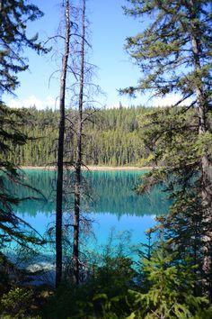 Il y a quelques jours, je vous avez laissés à Jasper où je venais d'arriver après un périple de 3 jours en train. A peine installée à mon… Jasper Alberta, Alberta Canada, Parc National, Lacs, Mountains, Nature, Travel, Canadian Rockies, Naturaleza