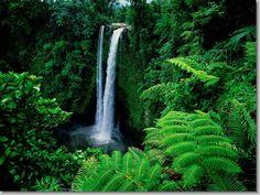 Samoan Islands - greeeeeen
