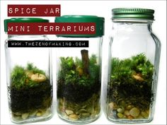 20 Easy And Pretty Diy Concepts For Terrariums 16