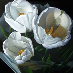 """Paintings from the Point: """"Wrapped Tulips"""" 24x24"""