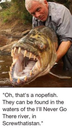 Goliath tigerfish caught by angler Jeremy Wade. Jeremy Wade is a British television presenter and author of books on angling. He is known for his television series River Monsters and Jungle Hooks. My kids love watching him! Jeremy Wade, Haha Funny, Funny Memes, Hilarious, Funny Stuff, Scary Stuff, Creepy Things, Creepy Facts, Strange Things