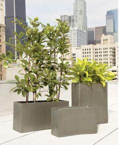 Tall Skinny Modern Planters Patio Decor Pinterest