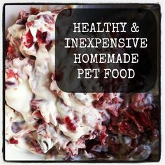 Healthy and Inexpensive Homemade Pet Food. For the cat, not the dog. @CHEESESLAVE