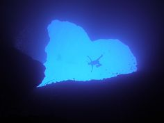 Blue Hole, Guam. Need to go back and dive this.