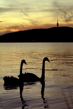 Sunset at Lake Burley Griffin - Canberra